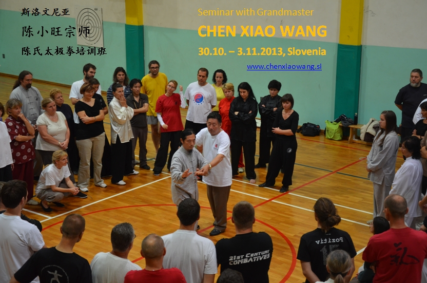 Seminar with GM Chen Xiaowang in Slovenia